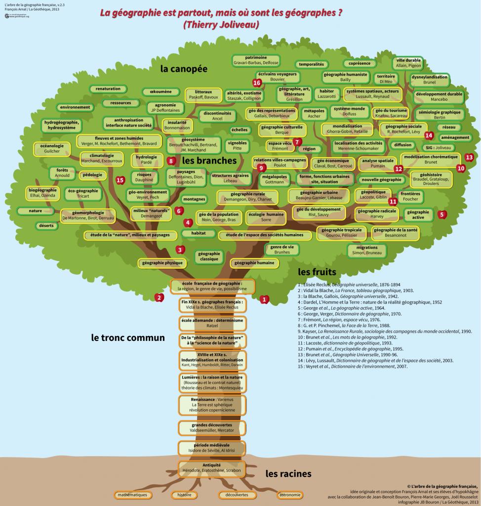 arbre de la geographie