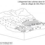 étagement des cultures, Haut-Atlas, Maroc, muet
