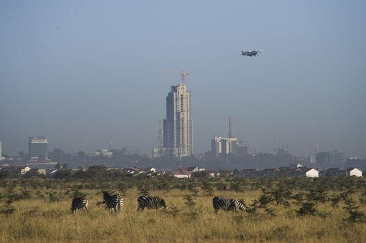 Le Parc National de Nairobi. A l'arrière, la skyline du CBD. Photographie Le Monde / Phil Moore