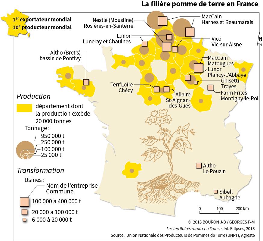 Production pommes de terre France